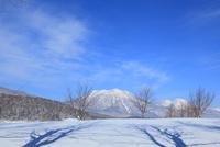 雪原と冬の北信五岳(黒姫山・妙高山)