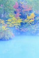 地獄沼と紅葉 11076015596| 写真素材・ストックフォト・画像・イラスト素材|アマナイメージズ