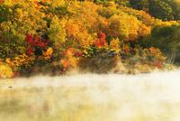 地獄沼と紅葉 11076015597| 写真素材・ストックフォト・画像・イラスト素材|アマナイメージズ