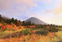 睡蓮沼と紅葉 八甲田山 11076015599| 写真素材・ストックフォト・画像・イラスト素材|アマナイメージズ
