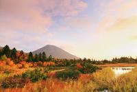 睡蓮沼と紅葉 八甲田山 11076015601| 写真素材・ストックフォト・画像・イラスト素材|アマナイメージズ
