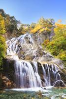 白山スーパー林道 姥ヶ滝と紅葉 11076015649  写真素材・ストックフォト・画像・イラスト素材 アマナイメージズ