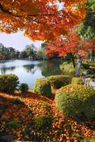 紅葉の兼六園