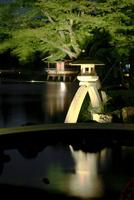 新緑の兼六園 徽軫灯籠とライトアップ夜景