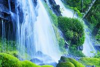 新緑と吐竜の滝