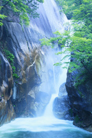 昇仙峡 新緑と仙娥滝