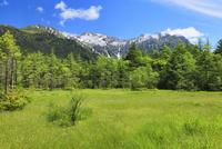 夏の上高地 田代湿原と穂高連峰