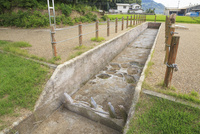高松城水攻めの築堤跡