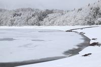 青木湖と氷紋