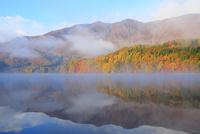 紅葉の青木湖と朝霧