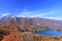 紅葉の青木湖と北アルプス(鹿島槍ヶ岳・五竜岳・白馬三山)
