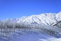 霧氷と北アルプス(鹿島槍ヶ岳・五竜岳・不帰ノ嶮)