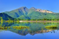 新緑の裏磐梯 秋元湖と磐梯山