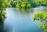 新緑の裏磐梯 檜原湖