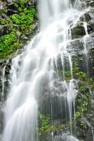 吾妻山地 新緑の幕滝