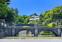 新緑の皇居二重橋と伏見櫓