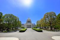 国会議事堂と正面並木に太陽