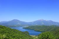 野尻湖の新緑と北信五岳(黒姫山・妙高山)