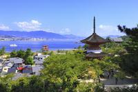 宮島・厳島神社の多宝塔 大鳥居と広島湾 11076017764| 写真素材・ストックフォト・画像・イラスト素材|アマナイメージズ