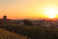 八坂の塔と京都市街夕景 11076018026| 写真素材・ストックフォト・画像・イラスト素材|アマナイメージズ
