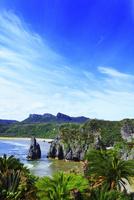 沖縄本島 辺戸岬と海