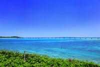 沖縄宮古島 西平安名崎から望む池間大橋 11076019114| 写真素材・ストックフォト・画像・イラスト素材|アマナイメージズ