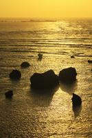 沖縄宮古島 東平安名崎から望む朝日に輝く海 11076019134| 写真素材・ストックフォト・画像・イラスト素材|アマナイメージズ