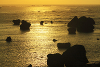 沖縄宮古島 東平安名崎から望む朝日に輝く海 11076019136| 写真素材・ストックフォト・画像・イラスト素材|アマナイメージズ