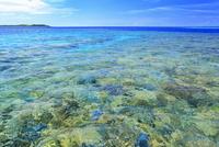 沖縄西表島 バラス島の珊瑚礁と海
