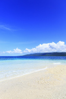 沖縄西表島 バラス島と海 11076019352| 写真素材・ストックフォト・画像・イラスト素材|アマナイメージズ