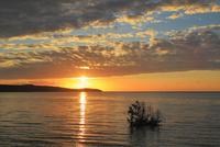 沖縄西表島 前良川のマングローブと朝日に染まる海 11076019412  写真素材・ストックフォト・画像・イラスト素材 アマナイメージズ