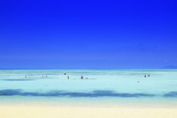 沖縄竹富島 コンドイビーチの海 11076019545| 写真素材・ストックフォト・画像・イラスト素材|アマナイメージズ