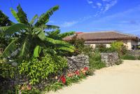 沖縄竹富島 赤瓦屋根の民家 11076019570| 写真素材・ストックフォト・画像・イラスト素材|アマナイメージズ