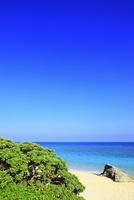 沖縄波照間島 ニシ浜と海 11076019664| 写真素材・ストックフォト・画像・イラスト素材|アマナイメージズ