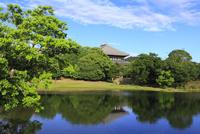 奈良公園 大仏池と青空