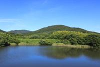 山の辺の道 井寺池と三輪山