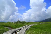 立山黒部・弥陀ヶ原 遊歩道と入道雲  11076019838| 写真素材・ストックフォト・画像・イラスト素材|アマナイメージズ