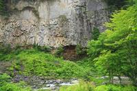 緑の厳立峡