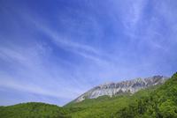 鍵掛峠から望むすじ雲と大山 11076020180| 写真素材・ストックフォト・画像・イラスト素材|アマナイメージズ
