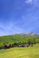 奥大山 新緑のスキー場