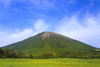 新緑の桝水高原から望む大山