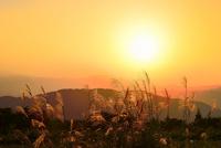 ススキと夕日に秩父の山並み・両神山を望む 11076020311| 写真素材・ストックフォト・画像・イラスト素材|アマナイメージズ