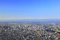 藻岩山山頂展望台から望む市街