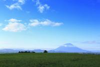 羊蹄山と緑の牧草地