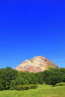 昭和新山と緑