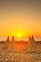 干し藁と夕日 11076021046| 写真素材・ストックフォト・画像・イラスト素材|アマナイメージズ