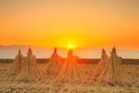 干し藁と夕日 11076021047| 写真素材・ストックフォト・画像・イラスト素材|アマナイメージズ