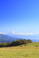 清里高原 牧場と富士山 11076021053| 写真素材・ストックフォト・画像・イラスト素材|アマナイメージズ