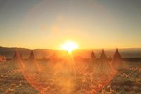 干し藁と夕日 11076021058| 写真素材・ストックフォト・画像・イラスト素材|アマナイメージズ