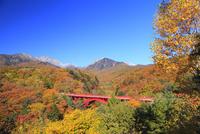 清里高原 紅葉の東沢橋と八ヶ岳 11076021079| 写真素材・ストックフォト・画像・イラスト素材|アマナイメージズ
